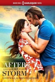 After the storm (Passion orageuse)